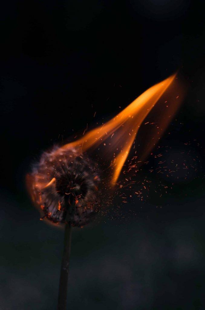 Burning dandelion clock signifying sleep anxiety